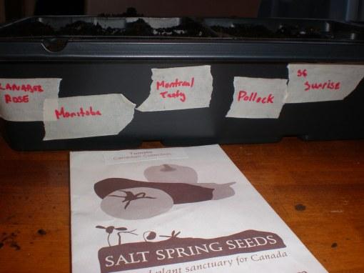 Salt Spring Seeds' Canadian Collection
