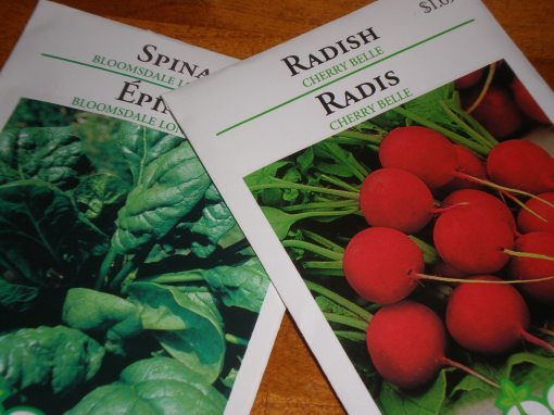 Packets of spinach and radish seeds